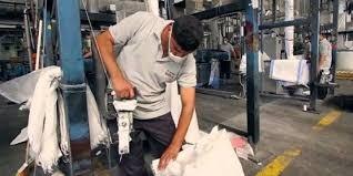 خبير: لا بد من محفزات لزيادة حجم العاملين في القطاع الفني للمصانع