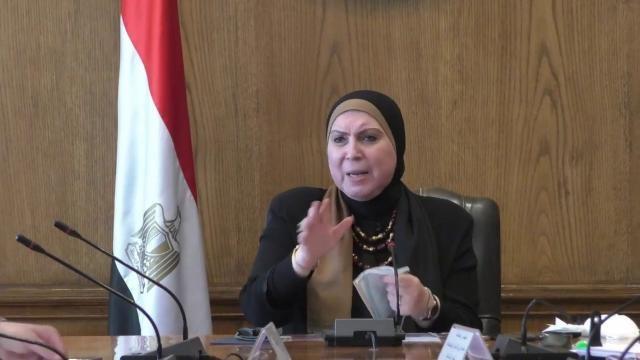 وزيرة الصناعة تكلف محمد عبد الكريم مديرا تنفيذياً لمركز تحديث الصناعة